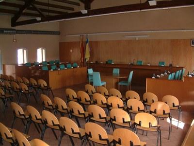 Prèvia del Ple ordinari del 29 de maig de 2008 .