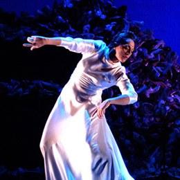 L'espectacle de dansa del Teatre Auditori se suspen..