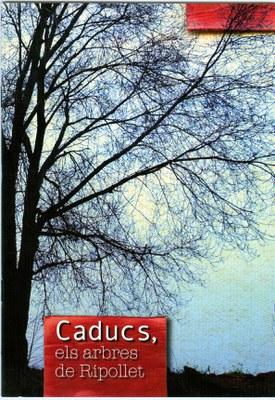 ripollet-med-port-arbres-cad-030708.jpg