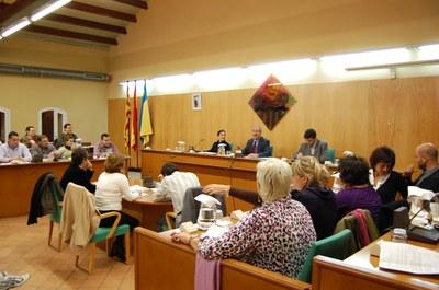 Sessió del Ple Municipal del 30 d'octubre de 2008.