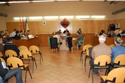 Acords del Ple Municipal del 29 de gener.