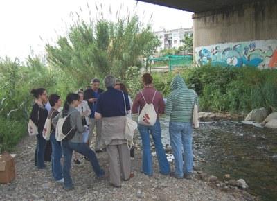 Medi Ambient ofereix dues conferències sobre plagues urbanes.