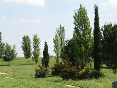 Comencen les obres per construir un pou de reg al parc de Gassó-Vargas.