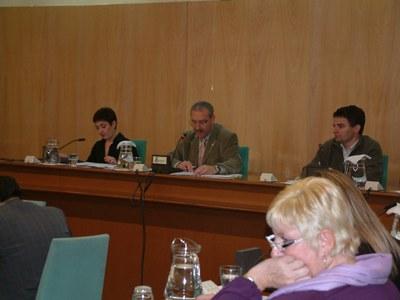 Acords del Ple ordinari del 31 de gener de 2008.
