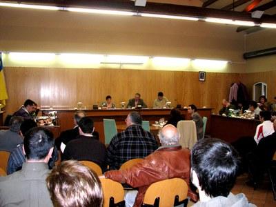 Acords del Ple Municipal de 28 de febrer de 2007.