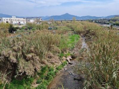 El Ple aprova més d'un milió d'euros per al projecte de recuperació de la llera dels rius.